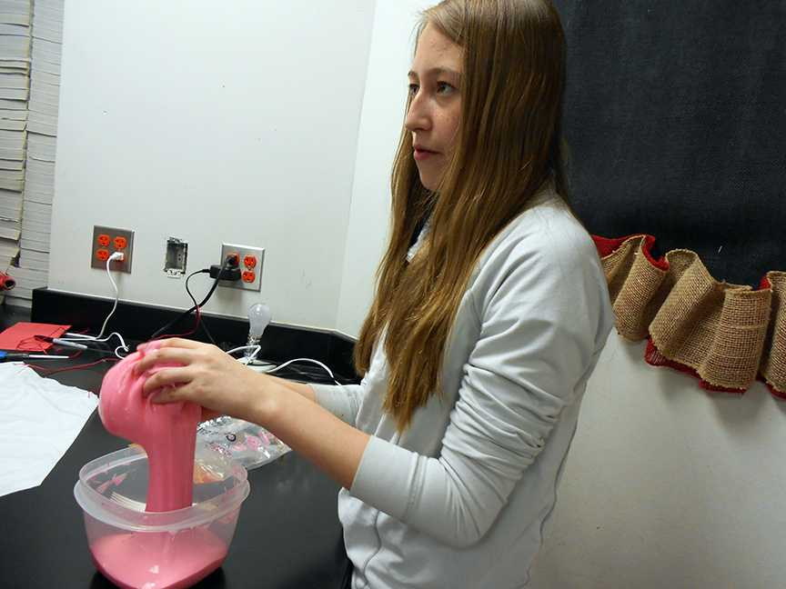 On April 29, 2015, Victoria Fogle messed with goo in her science class because she was making a project.