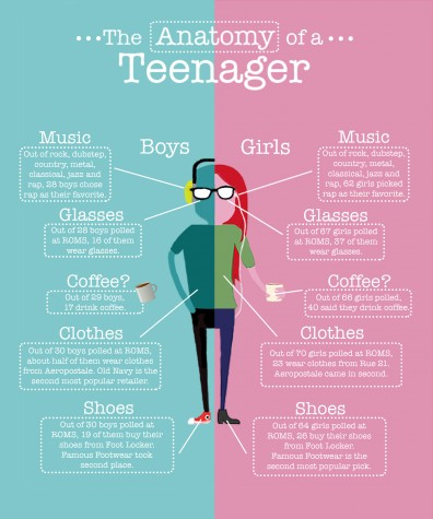 The anatomy of a teenager