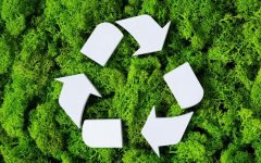 3 different ways you can help protect our environment